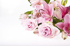 Free Pink Flowers Royalty Free Stock Image - 43862686