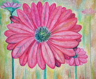 Pink Flowers. Impressionist painting of pink flowers Royalty Free Stock Photos