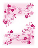 Pink flowers. The vector illustration contains the image of pink flowers Royalty Free Stock Image