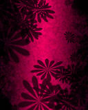 Pink Flowers Abstract Stock Photos