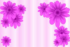 Pink flowers abstraction Royalty Free Stock Images