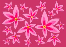 Pink flowers background. Light pink flowers on a dark pink background Stock Photography