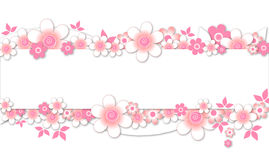 Pink flowers banner. On white Royalty Free Stock Images