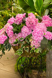Pink Flowers. Beautiful pink flower arrangement in a metal stand Stock Photo