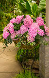 Pink Flowers. Beautiful pink flower arrangement in a metal stand Stock Images