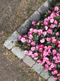 Pink flowers. Bench triangle shape Stock Photos