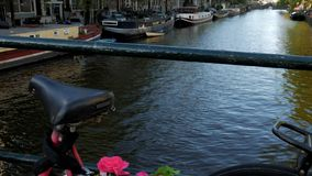 Pink flowers on bike in Amsterdam. Pink flowers adorn a bike on a bridge crossing Singel Canal in Amsterdam. Shot in 4K stock video footage