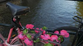Pink flowers on bike in Amsterdam. Pink flowers adorn a bike on a bridge crossing Singel Canal in Amsterdam. Shot in 4K stock video