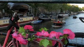 Pink flowers on bike in Amsterdam. Pink flowers adorn a bike on a bridge crossing Singel Canal in Amsterdam. Shot in 4K stock footage