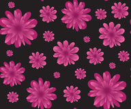 Pink flowers on black seamless background Stock Image