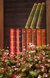 Pink flowers and books stock image