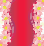 Pink flowers border on dark magenta Royalty Free Stock Photo