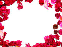 Pink flowers border frame Royalty Free Stock Images