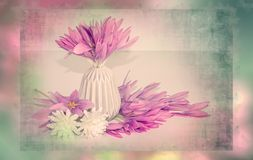 Pink flowers bouquet in pastel colors and shabby chic style, decoration. Retro, romantic scene with spring flowers, vintage frame Stock Photos