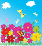 Pink flowers& butterfly Stock Image