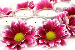 Pink flowers and candles Royalty Free Stock Photography