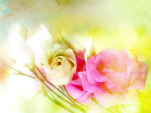 Pink flowers on colorful texture Stock Images