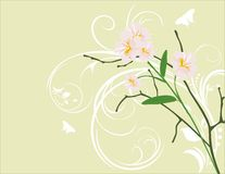 Pink flowers on the decorative background Stock Photos