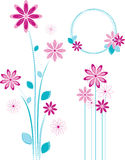 Pink flowers design. Royalty Free Stock Photography