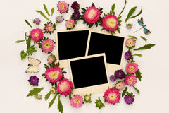 Pink flowers and empty photo frame on white background Royalty Free Stock Photography