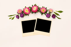 Pink flowers and empty photo frame on white background Stock Photography