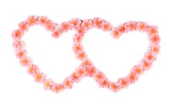 Pink flowers in form of heart. Stock Photography