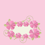 Pink flowers frame background. Stock Photos