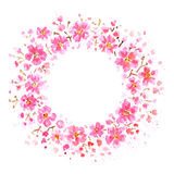 Pink flowers frame Royalty Free Stock Photos