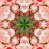 Pink Flowers gladiolus. In the form of a picture of a kaleidoscope Royalty Free Stock Photo