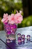 Pink flowers in the glass Royalty Free Stock Photo