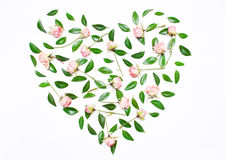 Pink flowers, green leaves in the shape of a heart Royalty Free Stock Photography