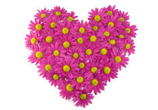 Pink flowers in a heart shape Stock Images