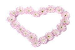 Pink flowers in heart shape Royalty Free Stock Images