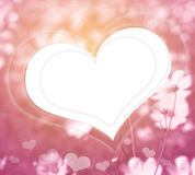 Pink flowers and heart in soft color style for romantic backgrou Stock Images