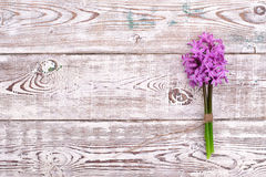 Pink flowers hyacinths on white wooden table. Top view, copy space. Stock Image