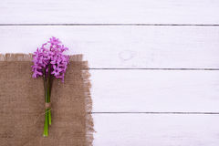 Pink flowers hyacinths on white wooden table, top view Royalty Free Stock Image
