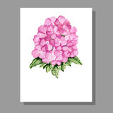 Pink flowers invitation Stock Image