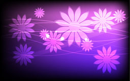 Pink flowers. And lines on gradient background Royalty Free Stock Photo