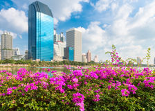 Pink flowers and modern city skyline of business district downto Stock Image