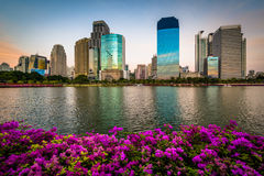 Pink flowers and modern skyscrapers along Lake Rajada at sunset, at Benjakiti Park, in Bangkok, Thailand. stock photography