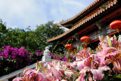 Pink flowers near buddhist temple Royalty Free Stock Photography