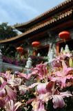 Pink flowers near buddhist temple Royalty Free Stock Photos