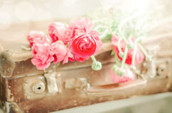 Pink flowers on old retro suitcase Stock Photo
