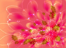 Pink flowers on orange background with dew and stars. EPS10 vector illustration.  stock illustration