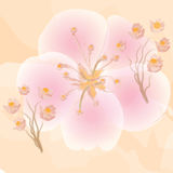 Pink flowers on orange watercolour background Royalty Free Stock Photography
