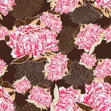 Pink flowers over brown Stock Photos