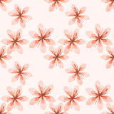 Pink flowers pattern Stock Images