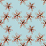 Pink flowers pattern Royalty Free Stock Photo