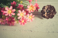 Pink flowers with pine cone. Royalty Free Stock Photography