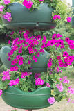 Pink flowers in a pot in park Royalty Free Stock Photos